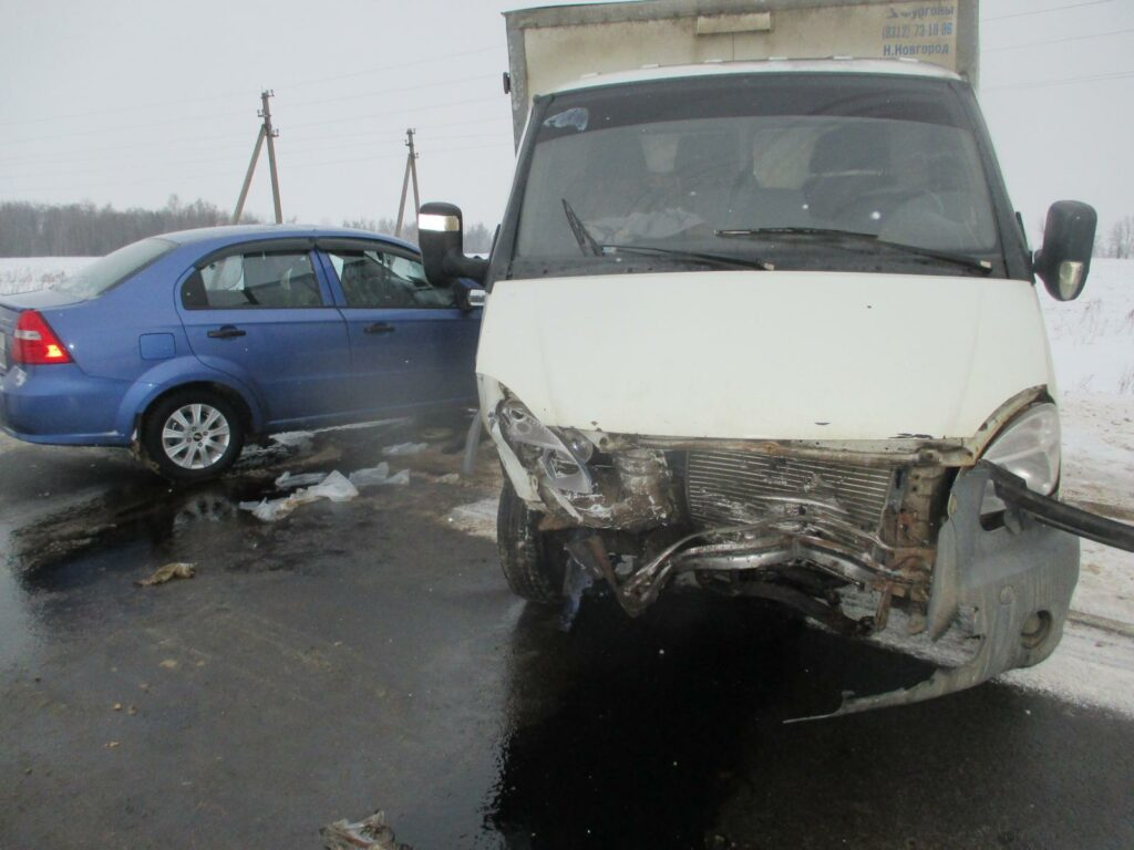 Мужчина и девочка-подросток пострадали в жутком ДТП в Ефремовском районе