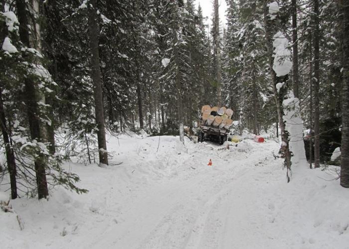 Водитель лесовоза погиб в жутком ДТП в Турочакском районе