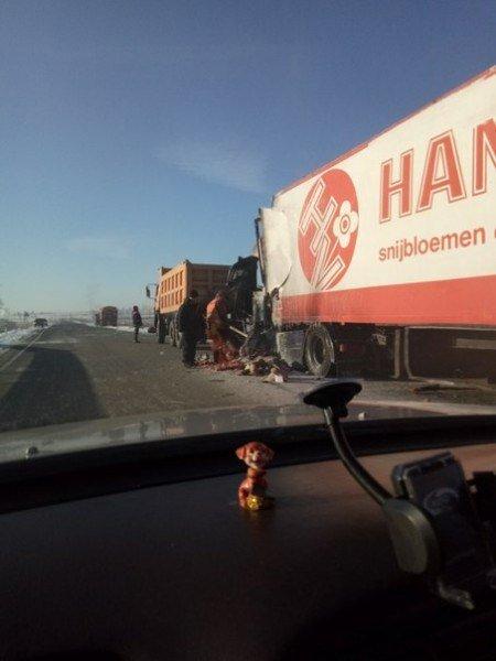 После столкновения с фурой в Забайкалье погиб водитель «Жигулей»