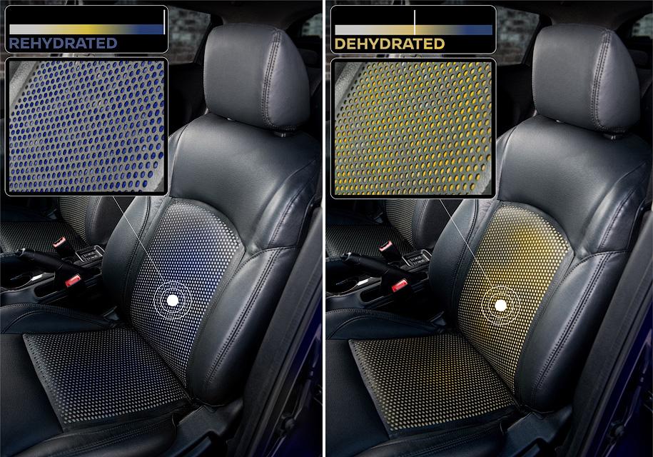 Технология Soak от Nissan предупреждает водителей об обезвоживании