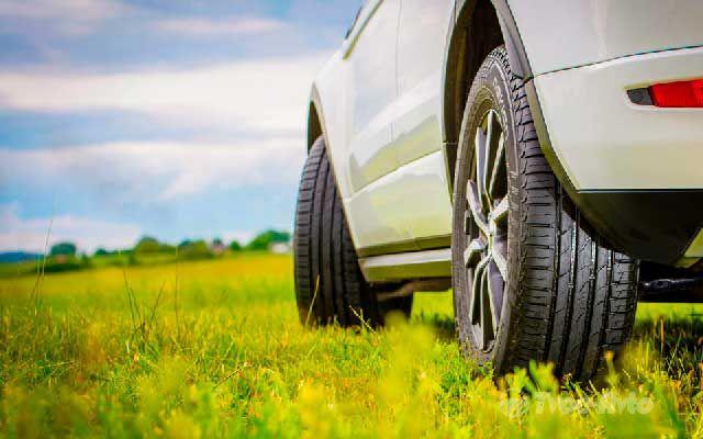летняя резина легкового автомобиля и цена уставного капитала